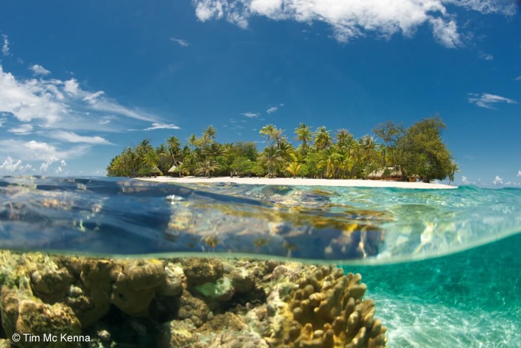 Rgi Le Sauvage Private Island Copyright Tim Mckenna 1